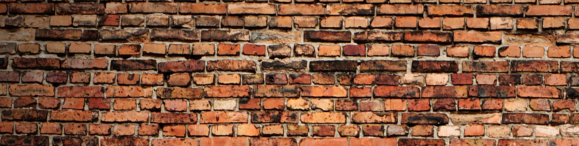 BrickWall_First_Palmetto2.png.jpg